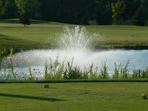Trou de terrain de golf avec la fontaine images libres de droits