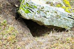 Trou de tirailleur sur le bâti sous la pierre et la mousse Photos libres de droits