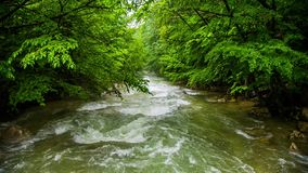 Uneasy flow of a mountain river stock video footage