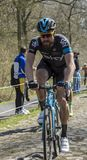 The Cyclist Bernhard Eisel in The Forest of Arenberg- Paris Roubaix 2015 royalty free stock images