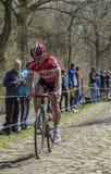 Sean De Bie in The Forest of Arenberg- Paris Roubaix 2015 Royalty Free Stock Image