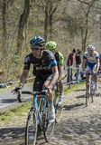 The Cyclist Andrew Fenn in The Forest of Arenberg- Paris Roubaix 2015 stock images
