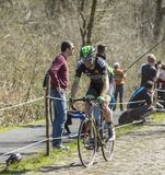 The Cyclist Daniel McLay in The Forest of Arenberg- Paris Roubai Stock Images
