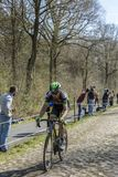 The Cyclist Benoit Jarrier in The Forest of Arenberg- Paris Roubaix 2015 royalty free stock photos