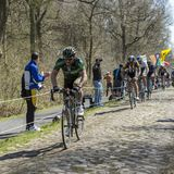 The Cyclist Morgan Lamoisson in The Forest of Arenberg- Paris Roubaix 2015 royalty free stock image