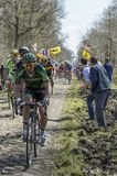 The Peloton in The Forest of Arenberg- Paris Roubaix 2015 Stock Images
