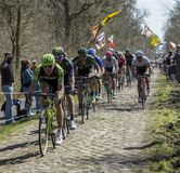 The Peloton in The Forest of Arenberg- Paris Roubaix 2015 stock photo
