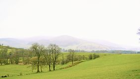Trough of Bowland. Hodder valley between Newton and Dunsop bridge Royalty Free Stock Images