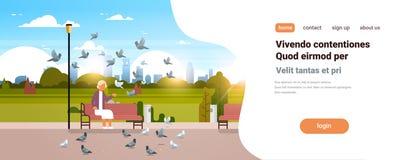Troupeau de alimentation de femme supérieure de pigeon reposant l'espace horizontal de copie de ville de banc en bois de parc de  illustration stock