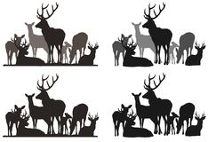 Troupeau de cerfs communs illustration de vecteur