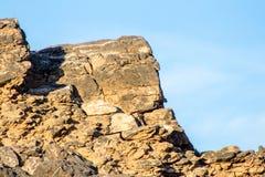 Troupeau de chèvres et de moutons errant sur des montagnes l'environnement et le Landsape photographie stock