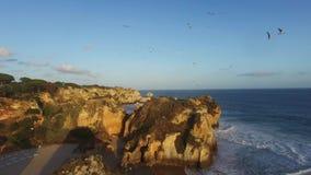 Troupeau des mouettes au-dessus d'une roche sur l'océan au coucher du soleil Algarve, Rotrugal banque de vidéos