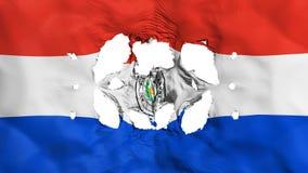 Trous dans le drapeau du Paraguay illustration stock