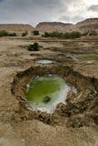Trous de bassin dans le désert Images stock