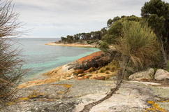Trousers Point, Flinders Island, Tasmania, Australia. Scenic vista at Trousers Point near Strzelecki National Park along the west coast of Flinders Island royalty free stock image