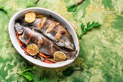 Trout with bacon and vegetables. Trout with bacon baked in the oven.Fish with vegetables.Delicious roasted trout royalty free stock photos