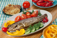 Trout baked in the oven Stock Image