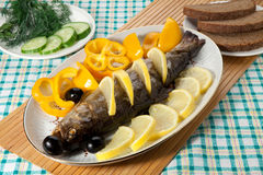 Trout baked in the oven Royalty Free Stock Images