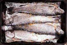 Trout for baking Royalty Free Stock Photo