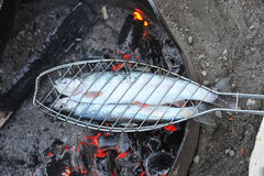 Trout barbecue Royalty Free Stock Images