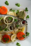 Trout with carrot and other ve Stock Image