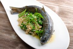 Trout cooked with barley and spinach Stock Photography