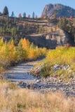 Trout Creek в осени с горой гиганта главной в расстоянии стоковые фотографии rf