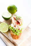 Trout Crostini Royalty Free Stock Images