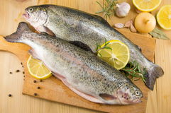 Trout on a cutting board. Raw seasoned trout on a cutting board stock photography