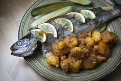 Trout dish Royalty Free Stock Photography