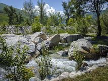 On the trout farm in Talgar. Royalty Free Stock Images