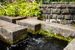 The trout farm at theVillage of Ribeiro Frio on the island of Madeira Portugal Stock Photography