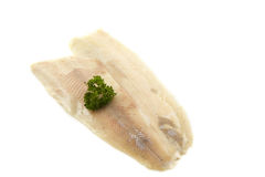 Trout fillet Royalty Free Stock Photo