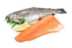Trout and fillet. Fresh trout and fillet with lemon and parsley over white background Stock Images