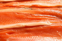 Trout fillet background Royalty Free Stock Image