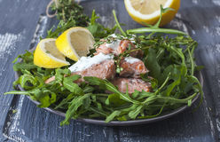 Trout fillet  cooked in a sous-vide bag. Royalty Free Stock Images