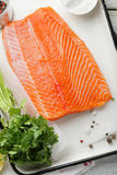 Trout fillet with spice on white tray Stock Photography