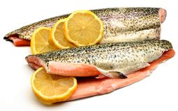 Trout fillets Royalty Free Stock Image