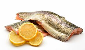 Trout fillets Royalty Free Stock Photography