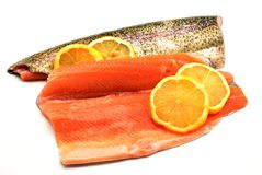 Trout fillets Royalty Free Stock Photos