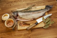 Fish on the cutting board stock image