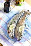 Trout fish healthy food with lemon Royalty Free Stock Photography