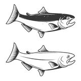 Trout fish icons isolated on white background. Design element fo Stock Images