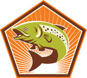 Trout Fish Jumping Retro Royalty Free Stock Images
