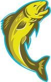 Trout Fish Jumping Retro Royalty Free Stock Photos