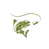 Trout fish and lure vector design. Template Royalty Free Stock Images