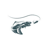 Trout fish and lure vector design. Template Stock Image