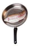 Trout fish on a pan Royalty Free Stock Images