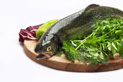 Trout fish with spices. Fresh trout on wood cutting board on on white background Royalty Free Stock Photography
