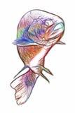Trout Fish Swimming Stock Photo